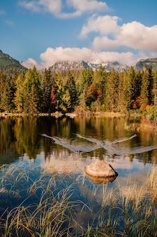 De herfstberg en strbske-plesomeer in hoge tatras, slowakije