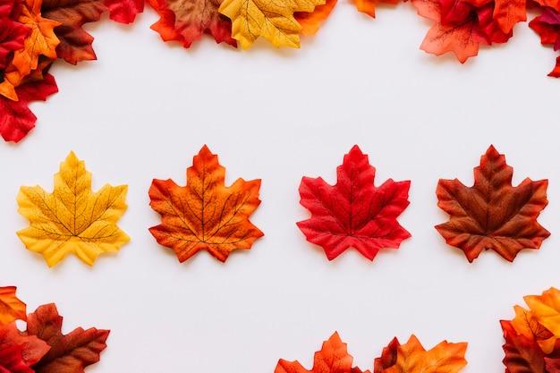 De herfstbladeren die binnen bladgrens leggen