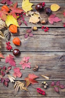 De herfstbladeren op darrk oud hout