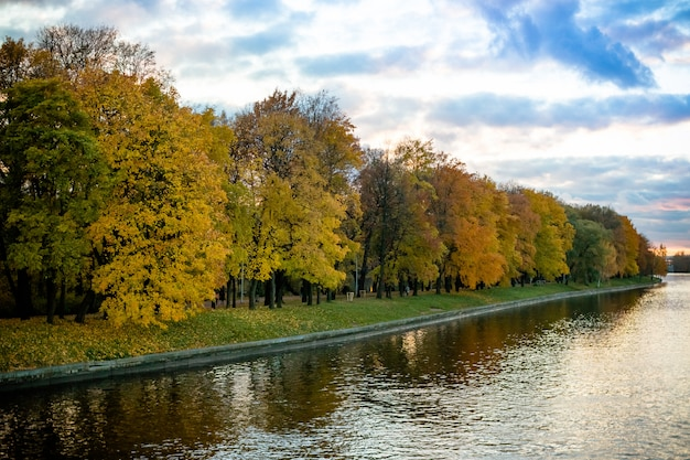 De herfstbomen dichtbij het meer in bewolkt weer.