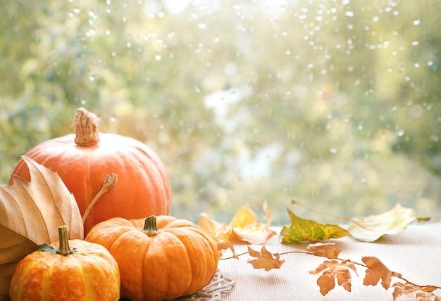 De herfstdecoratie op een vensterraad op een regenachtige dag, ruimte