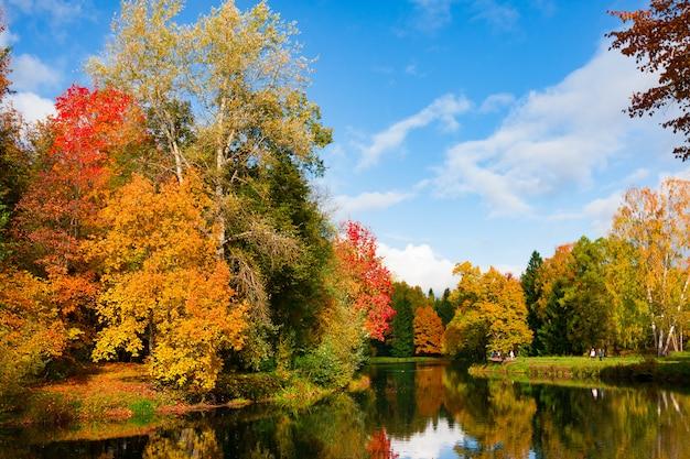 De herfstgebladerte in pavlovsky-park, pavlovsk, heilige petersburg