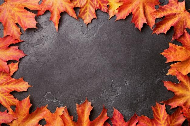 De herfstkader van heldere levendige rode en gele esdoornbladeren op zwarte flikkerende achtergrond.