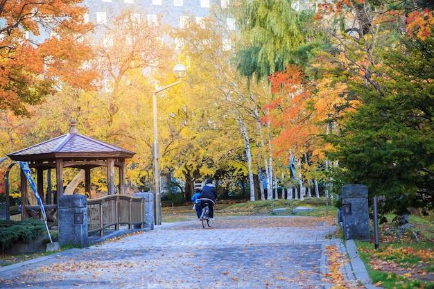 De herfstlandschap bij nakajima-park, sapporo-stad, japan.
