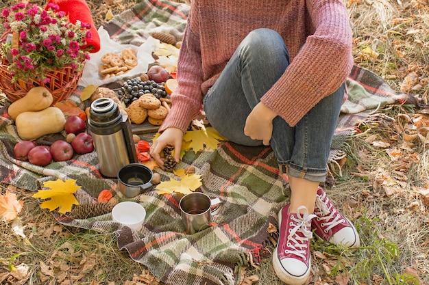 De herfstpicknick in het park, warme de herfstdag.