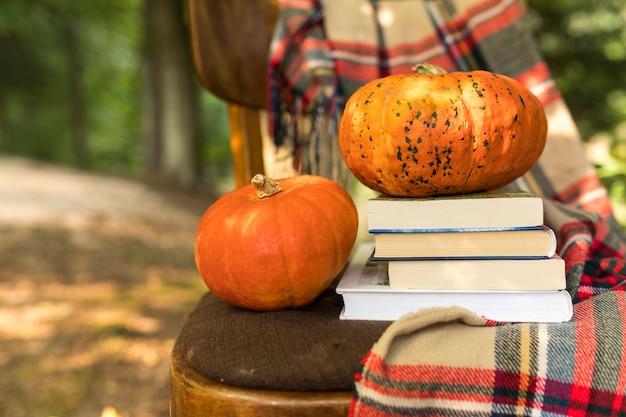 De herfstregeling van de close-up met pompoenen op oude stoel