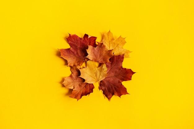 De herfstsamenstelling is gemaakt in de vorm van een vierkant bekleed met heldere esdoornbladeren