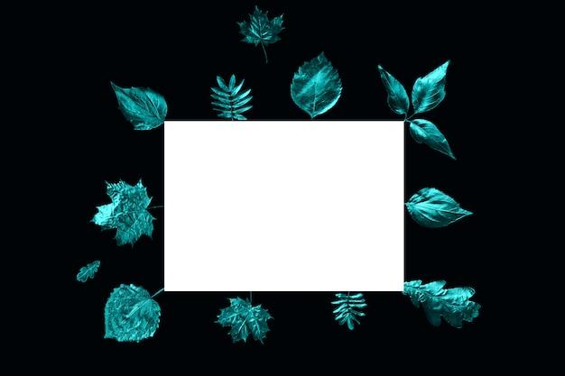 De herfstsamenstelling van verschillende bladeren en leeg wit blad op een zwarte achtergrond