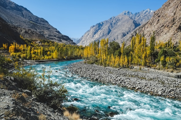 De herfstscène, blauwe turkooise gilgit-rivier die door gupis, ghizer, pakistan vloeien.
