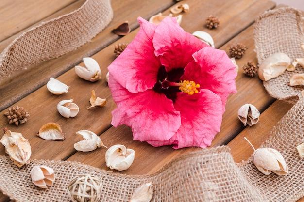 De hibiscus bloeit natuurlijke samenstelling met natuurlijke elementen, op houten oppervlakte