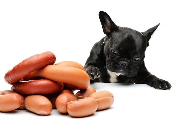 De hond kijkt naar een bos worstjes. franse bulldog en worstjes. grappig portret van een zwarte bulldog.