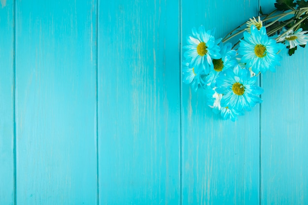 De hoogste mening van het blauwe madeliefje van kleurengerbera bloeit boeket op blauwe houten achtergrond met exemplaarruimte