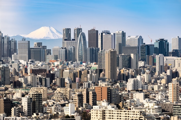 De horizon van tokyo en bergfuji in japan.