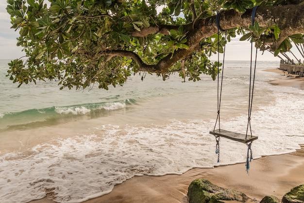 De houten schommel hangt van boom dichtbij over strand. atlantische oceaan, kanaries.