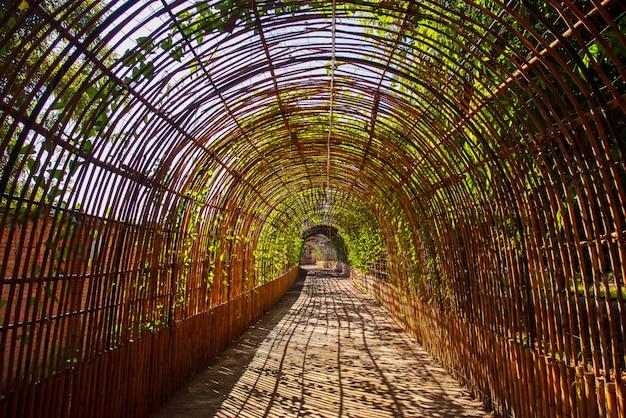 De houten tunnel van de bamboekromme in een park