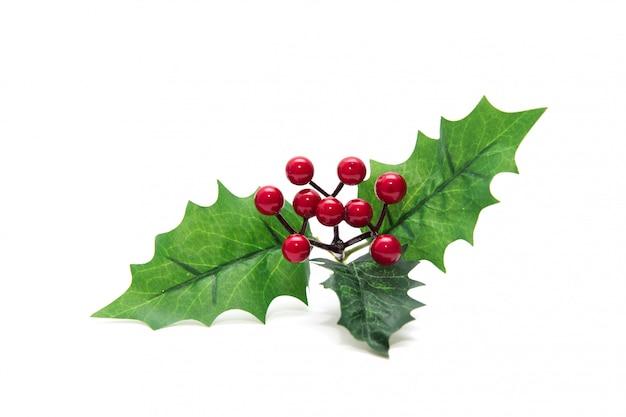 De hulstbes verlaat kerstmisdecoratie op witte achtergrond wordt geïsoleerd die