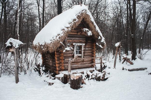 De hut staat in het bos in de wintersneeuw