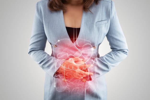 De illustratie van interne organen is op het lichaam van de vrouw tegen grijs
