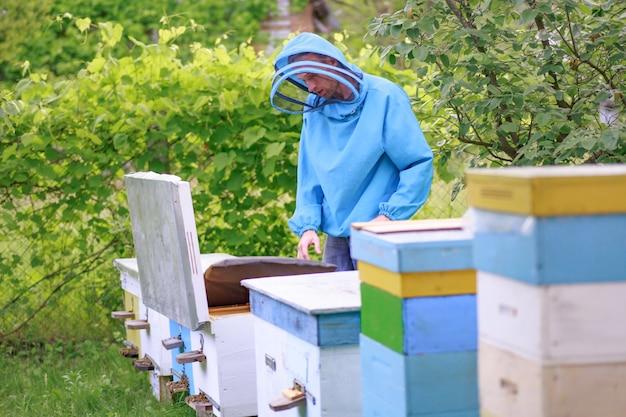 De imker haalde een frame uit een enkele groene korf. bijenstal met rustige bijen. de netelroos op kuit controleren.