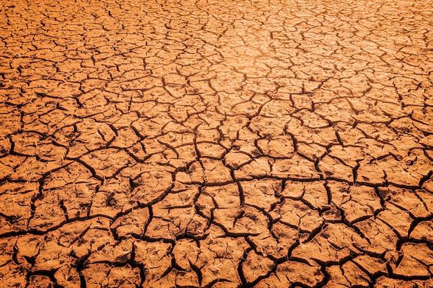 De impact van de opwarming van de aarde op door de zon gebarsten bodem en het verlies van alle flora en fauna