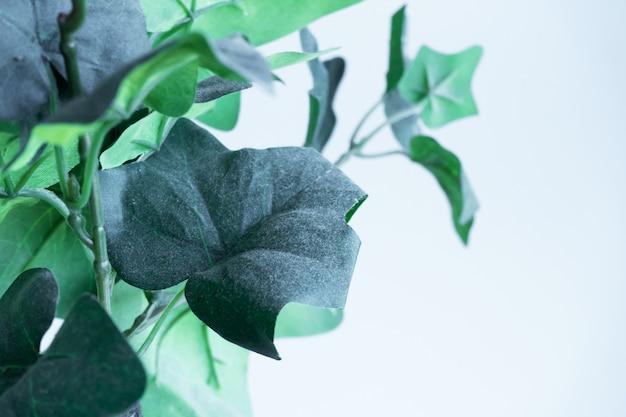 De inrichting van het interieur. plastic bloem in een fles. groene bladeren. dode bloemen.