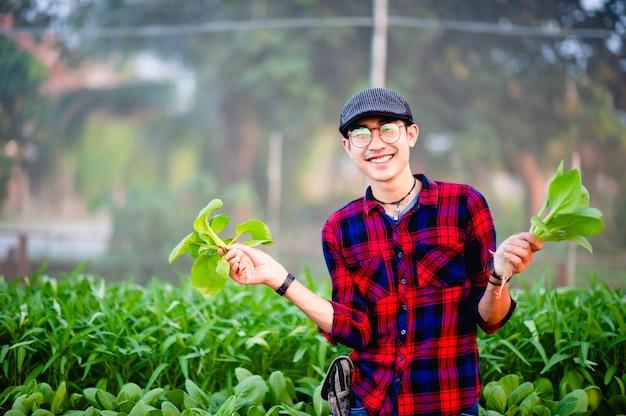 De jonge man en zijn saladetuin en zijn gelukkige glimlach