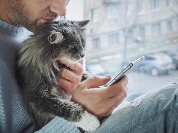 De jonge mens zit op het vensterbank pluizige katje op zijn overlapping en leest nieuws op zijn mobiele telefoon