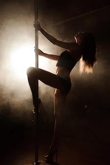 De jonge slanke sexy vrouw van de pooldans in een studio.