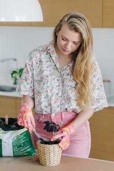 De jonge vrouw in roze handschoenen giet aarde en transplanteert huisbloemen in nieuwe rieten mooie potten.