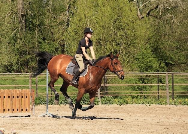 De jonge vrouw met een bruin paard springt een hindernis