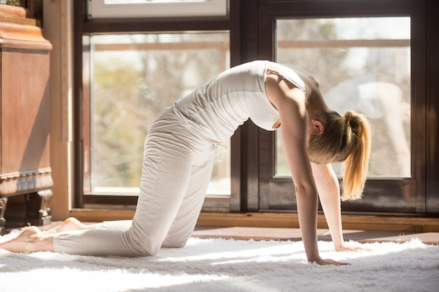 De jonge yogi aantrekkelijke vrouw in kat stelt, huisbinnenland