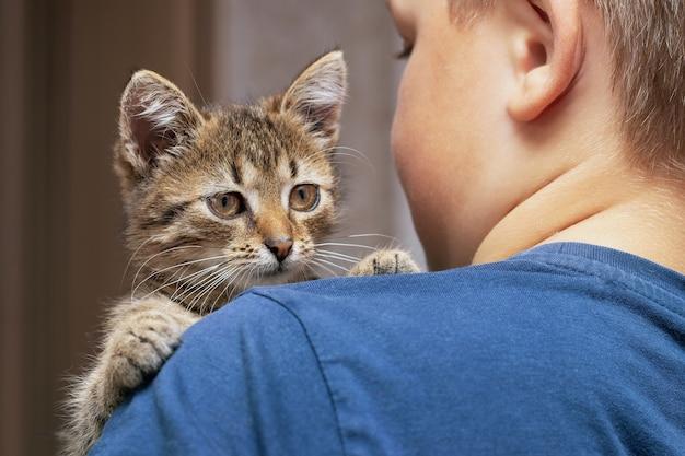 De jongen houdt een klein schattig gestreept katje op zijn schouder