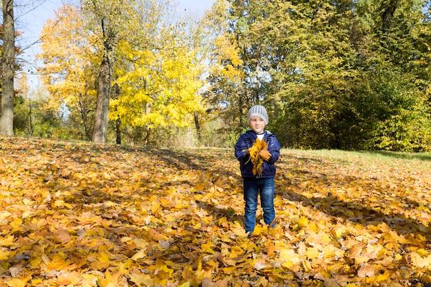 De jongen met geel gebladerte in van hem dient het de herfstseizoen in