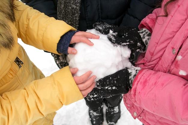 De jongeren die een sneeuwbal in van hem houden dient het de winterpark in