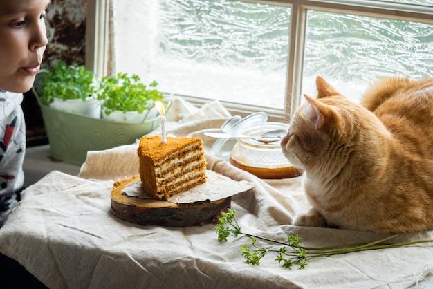 De kat ligt naast een stuk honingkoek met een brandende kaars