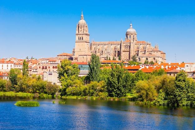 De kathedraal van salamanca is een laatgotische en barokke kathedraal in de stad salamanca, castilië en león in spanje