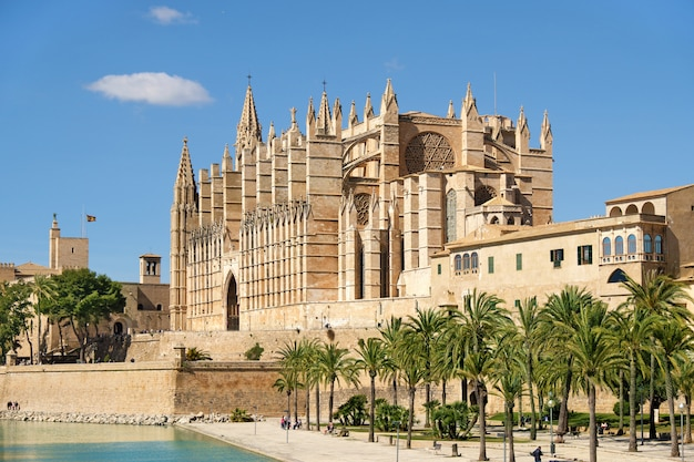 De kathedraal van santa maria van palma de mallorca, spanje Premium Foto