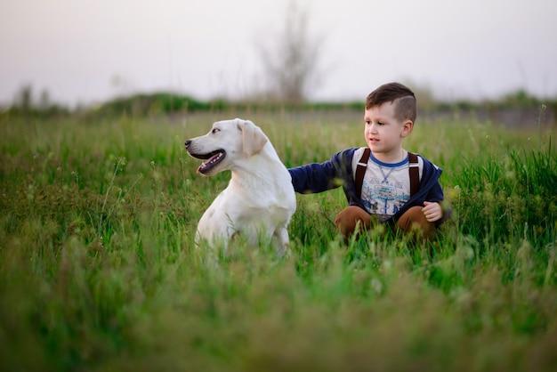 De kleine jongen en het mooie doggie op de zomer lopen in het veld
