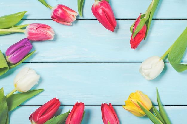 De kleurrijke bloemen van de de lentetulp op lichtblauwe houten achtergrond