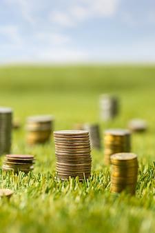 De kolommen met munten op gras