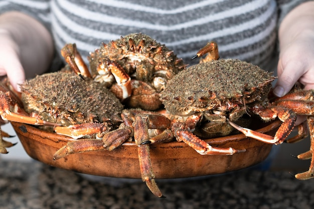 De krabben sluiten omhoog bovenop kleiplaat. zeevruchten op de voorgrond