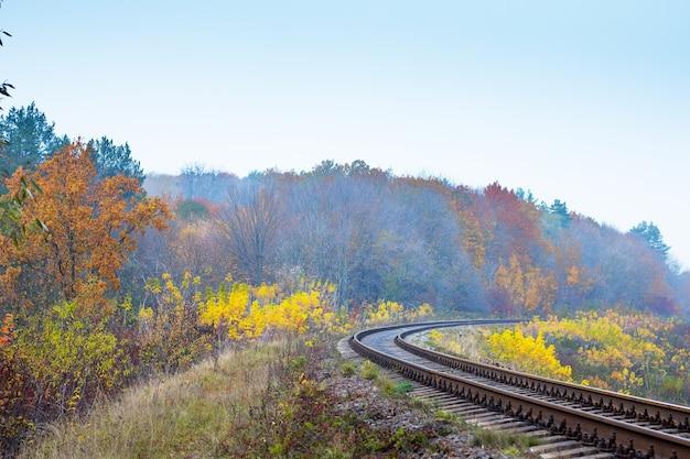 De kronkelende spoorlijn die door het herfstbos loopt
