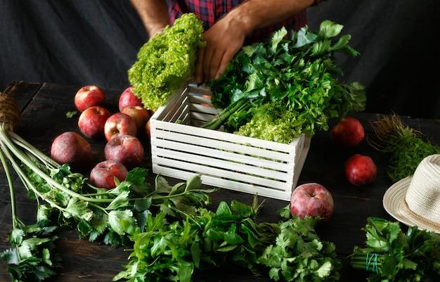 De landbouwer kruiden vers het houten doos oogsten