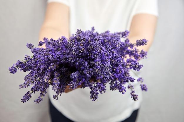 De lavendel bloeit boeket in vrouwenhanden