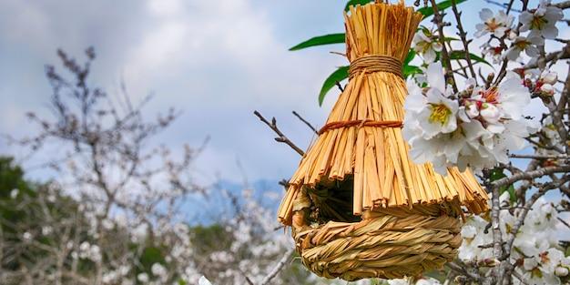 De lente. aardachtergrond met vogelhuis