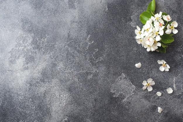De lente bloeiende tak op grijze concrete achtergrond