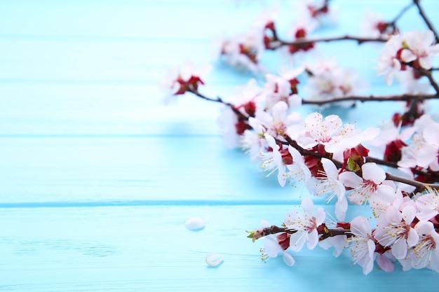 De lente bloeiende takken op blauwe houten achtergrond met copyspace.