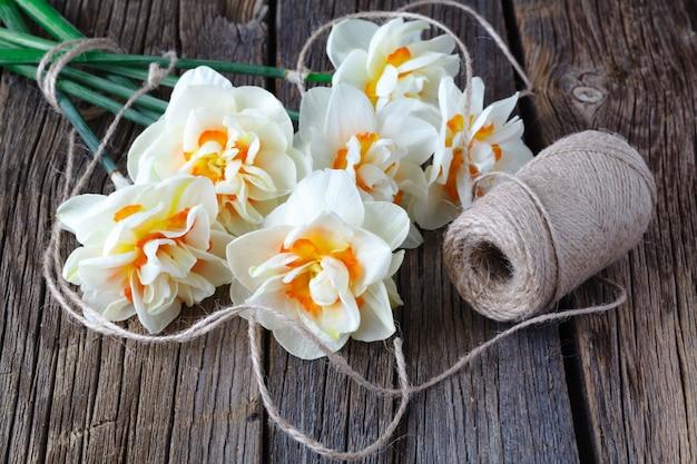 De lente pasen met verse witte gele narcissen verlaagt dicht omhoog