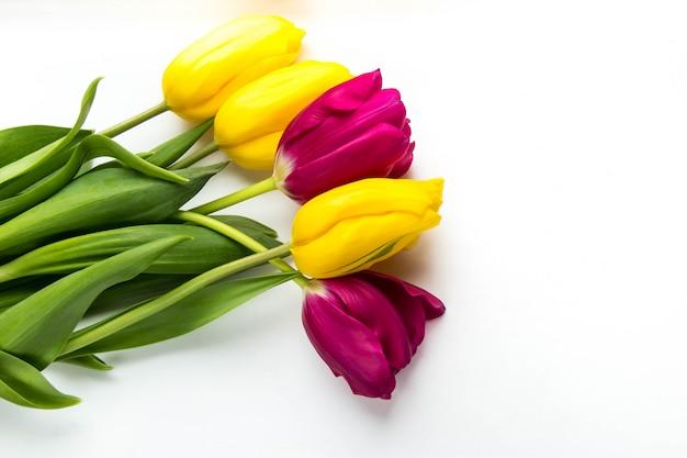 De lenteachtergrond van roze en gele tulpen op wit met copyspace