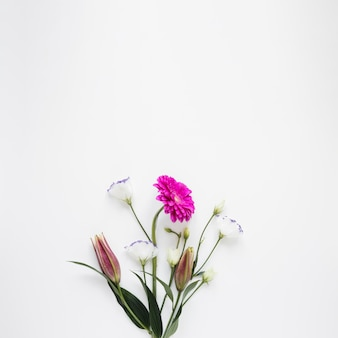 De lenteboeket van bloemen op witte achtergrond worden geïsoleerd die